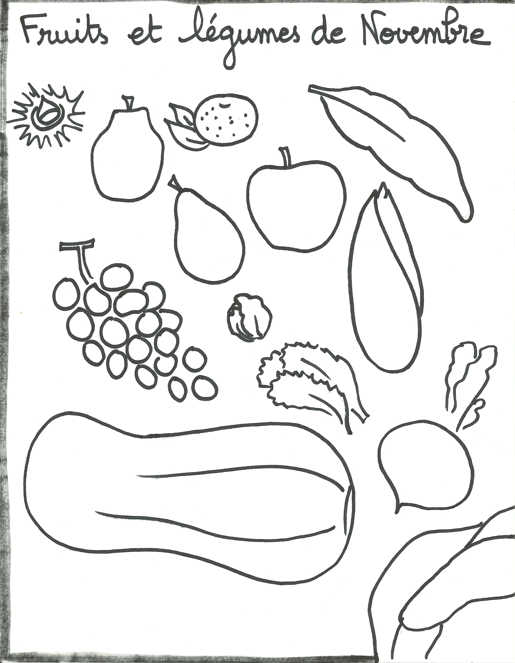 Favori Fruits et légumes de Novembre - la fabrique des Marmottons EL13